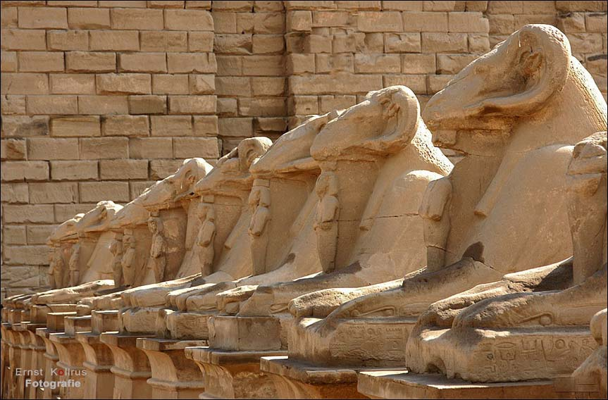 Widdersphinxen ( Karnak )