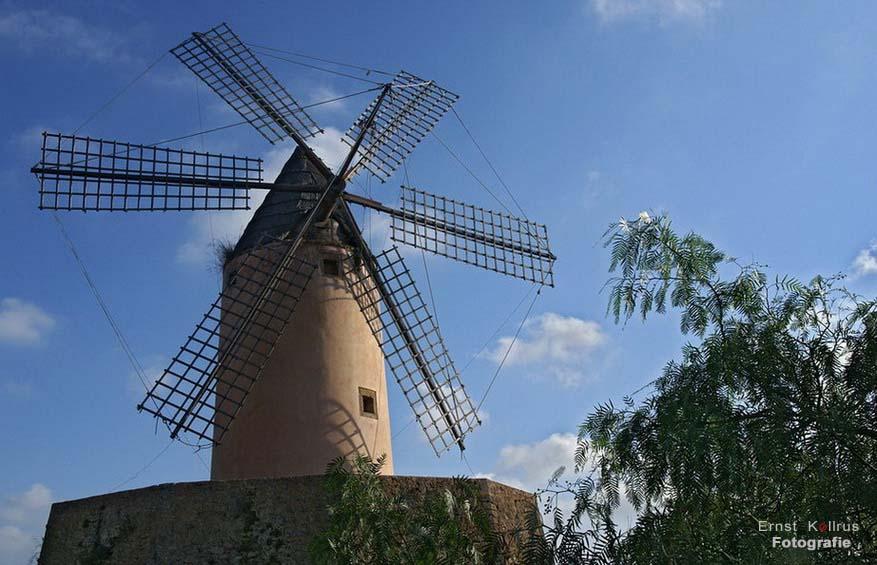Das Wahrzeichen Mallorcas